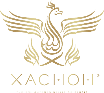 Xachoh: Exhibiting at the Takeaway Innovation Expo